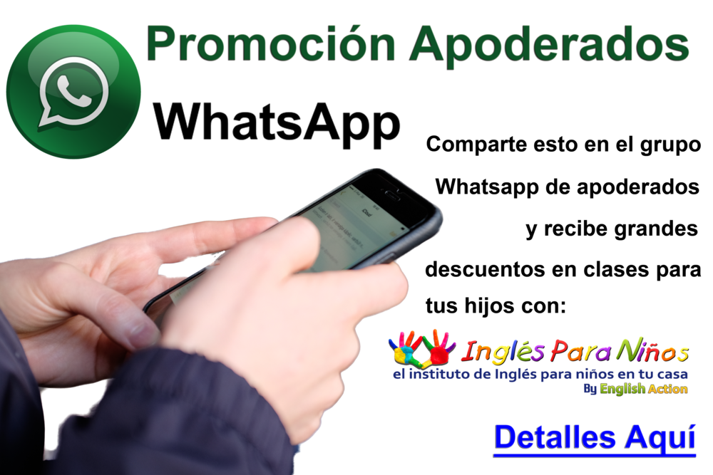 large-promocion_whatsapp